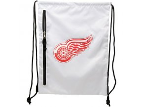 NHL vak Deroit Red Wings Chalk