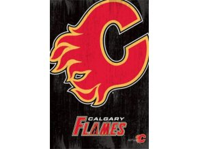 NHL Plakát Calgary Flames Team Logo Cut